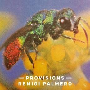 Remigi Palmero, Provisions
